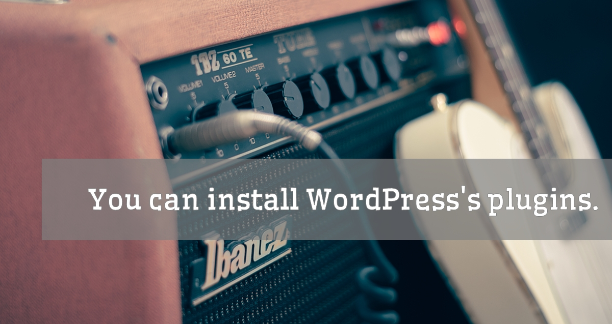 wordpress plug in install enable disable stop delete